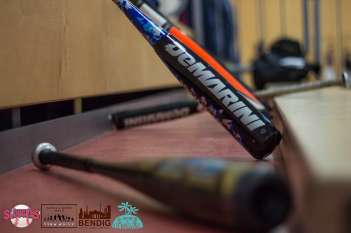 nice bats by DeMarini and TPX